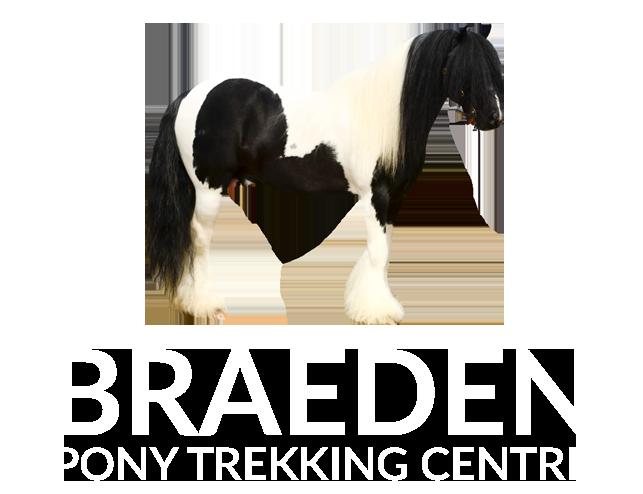 Braeden Pony Trekking
